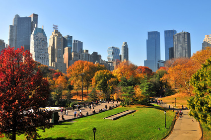 Hedge Fund Sublease- Steps from Central Park